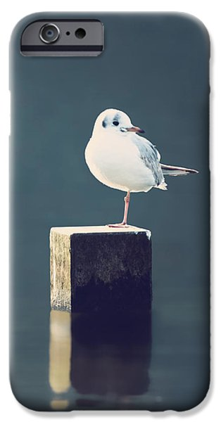 Am I Alone IPhone Case by Wim Lanclus