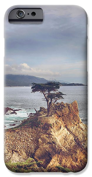 And Yet Here I Still Stand IPhone Case by Laurie Search