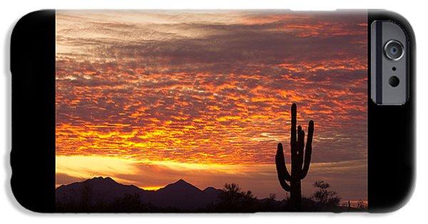 Arizona November Sunrise With Saguaro   IPhone 6s Case by James BO  Insogna