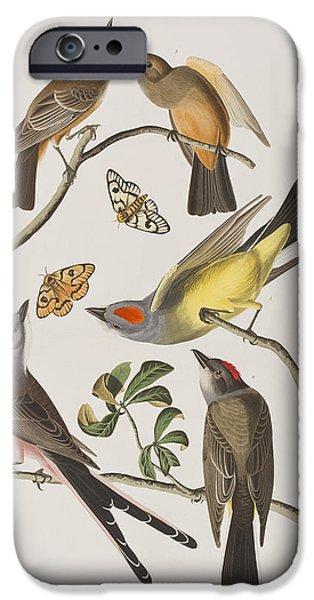 Arkansaw Flycatcher Swallow-tailed Flycatcher Says Flycatcher IPhone 6s Case by John James Audubon