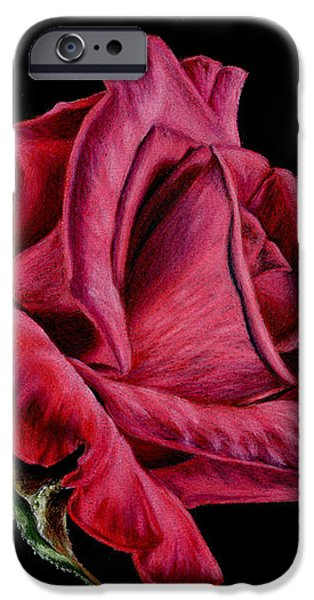 Red Rose On Black IPhone Case by Sarah Batalka