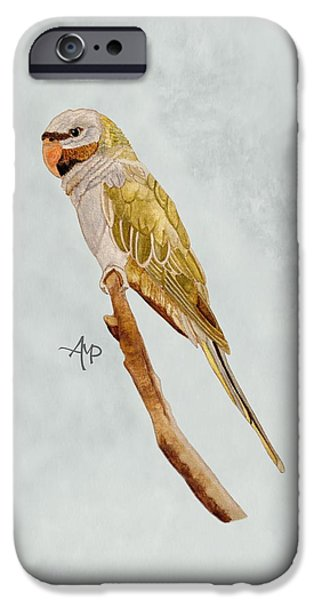 Derbyan Parakeet IPhone 6s Case by Angeles M Pomata