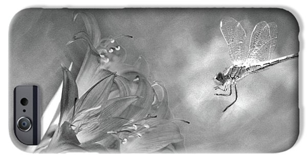 The Dragonfly And The Flower IPhone Case by Linda Lees