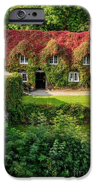 Autumn Brilliance IPhone Case by Adrian Evans
