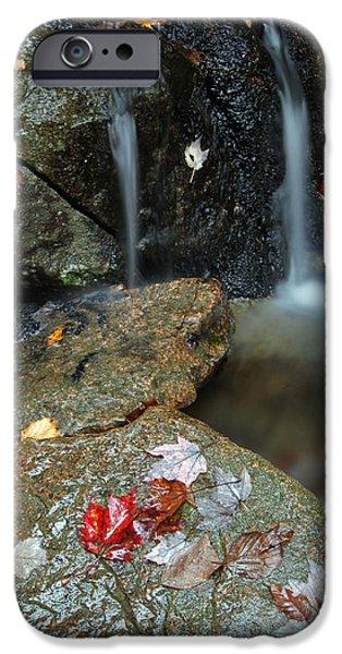 Autumn Cascades IPhone Case by Juergen Roth