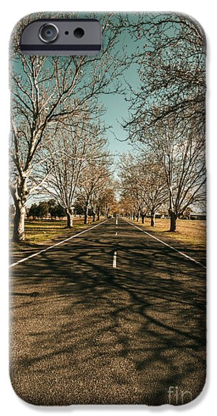 Autumn Roads And Leafless Trees IPhone Case by Jorgo Photography - Wall Art Gallery