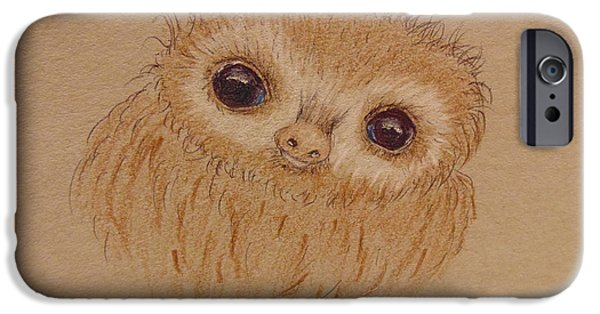 Baby Sloth IPhone Case by Ginny Youngblood