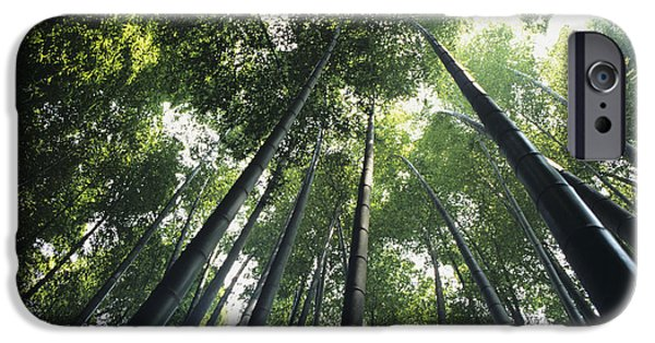 Bamboo Forest IPhone Case by Mitch Warner - Printscapes