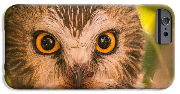 Beautiful Owl Eyes IPhone Case by Robert Bales