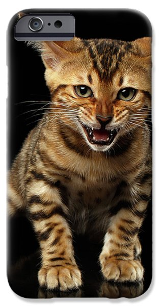 Bengal Kitty Stands And Hissing On Black IPhone 6s Case by Sergey Taran