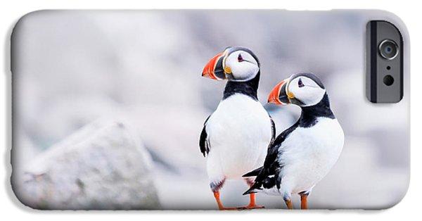 Birdland IPhone 6s Case by Evelina Kremsdorf