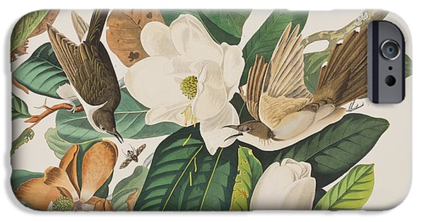 Black Billed Cuckoo IPhone 6s Case by John James Audubon