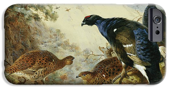 Blackgame Or Black Grouse IPhone 6s Case by Archibald Thorburn
