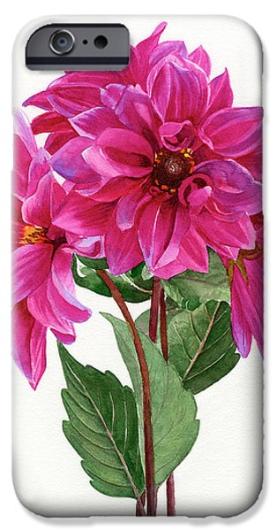 Bouquet Of Rose Violet Dahlias IPhone Case by Sharon Freeman