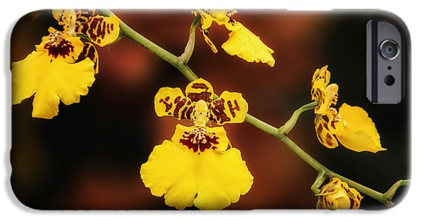 Bright And Beautiful Orchids IPhone Case by Tom Mc Nemar