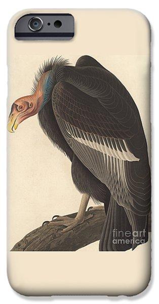 Californian Vulture IPhone 6s Case by John James Audubon