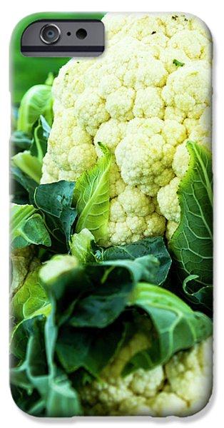 Cauliflower Head IPhone Case by Teri Virbickis