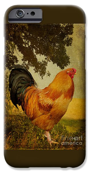 Chanticleer IPhone 6s Case by Lois Bryan