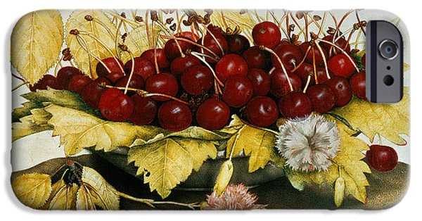 Cherries And Carnations IPhone Case by Giovanna Garzoni