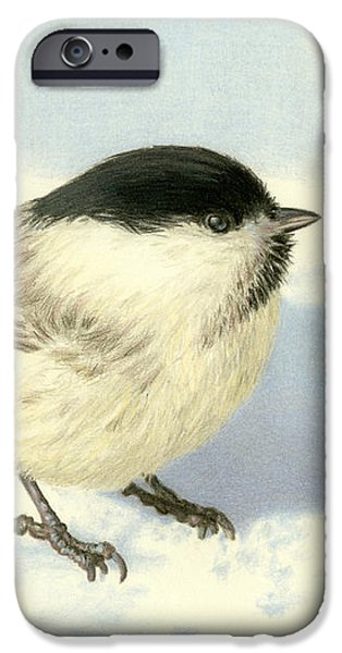 Chilly Chickadee IPhone 6s Case by Sarah Batalka