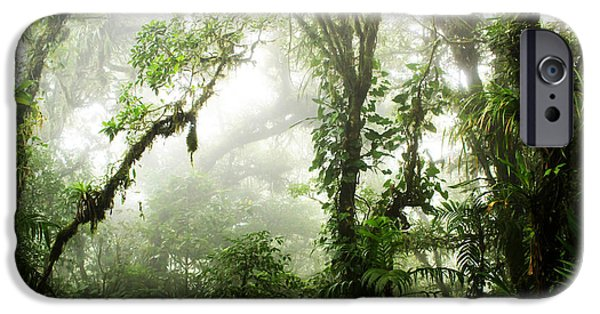 Cloud Forest IPhone Case by Nicklas Gustafsson