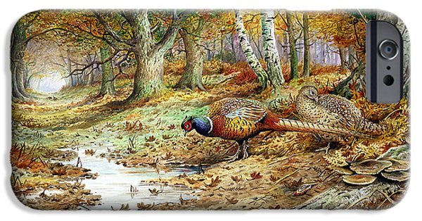 Cock Pheasant And Sulphur Tuft Fungi IPhone Case by Carl Donner