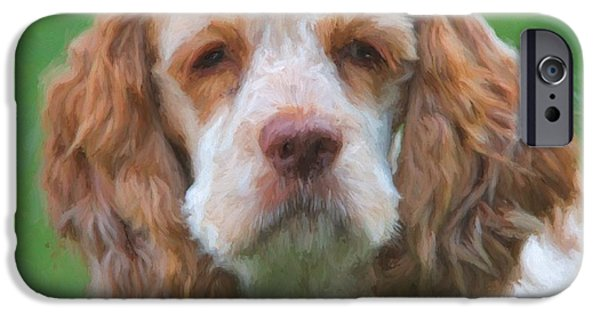 Cocker Spaniel On Green IPhone Case by Dan Sproul