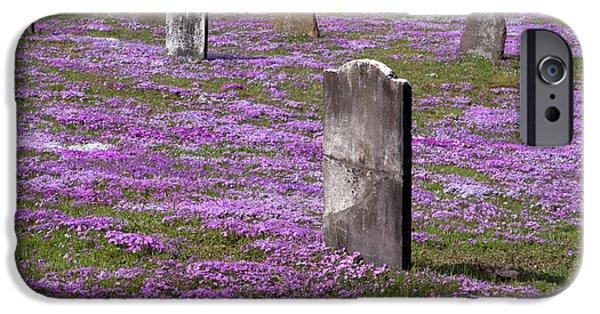 Colonial Tombstones Amidst Graveyard Phlox IPhone Case by John Stephens