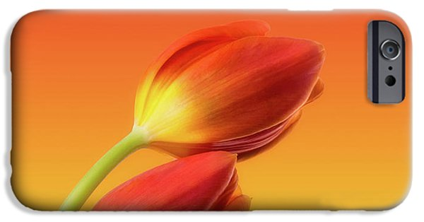Colorful Tulips IPhone Case by Wim Lanclus