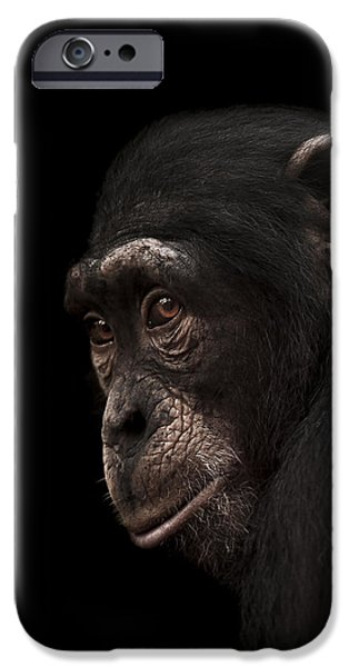 Contemplation IPhone Case by Paul Neville