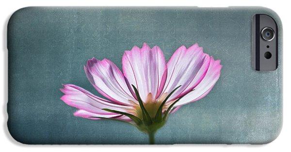 Cosmos - Summer Love IPhone Case by Kim Hojnacki
