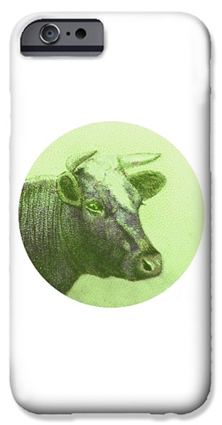 Cow II IPhone 6s Case by Desiree Warren