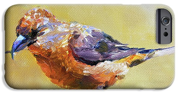 Crossbill IPhone 6s Case by Jan Hardenburger