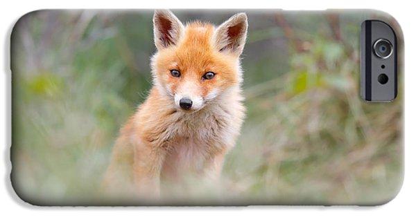 Cute Baby Fox IPhone Case by Roeselien Raimond