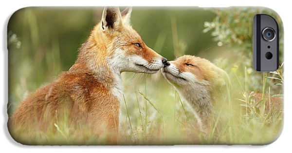 Daddy's Girl - Red Fox Father And Its Young Fox Kit IPhone Case by Roeselien Raimond