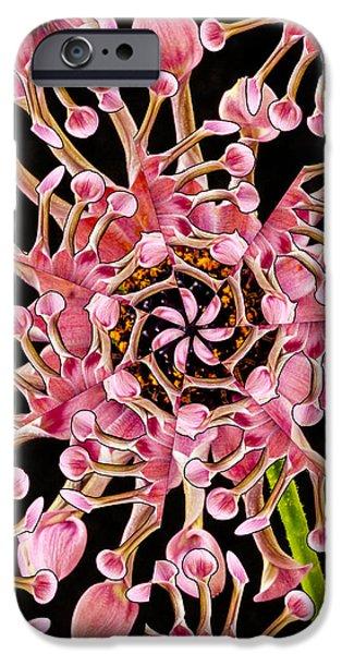 Dahlia Kaleidoscope By Jean Noren IPhone Case by Jean Noren