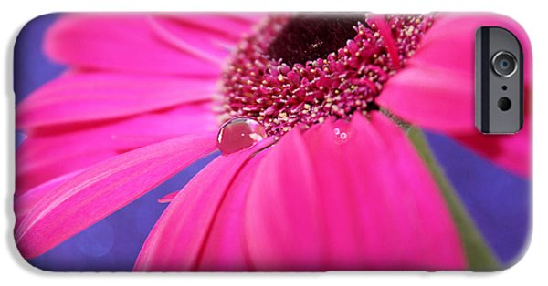 Daisy Fairy IPhone Case by Krissy Katsimbras