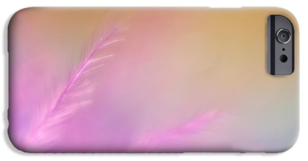 Delicate Pink Feather IPhone Case by Scott Norris