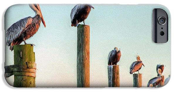 Destin Pelicans-the Peanut Gallery IPhone 6s Case by JC Findley