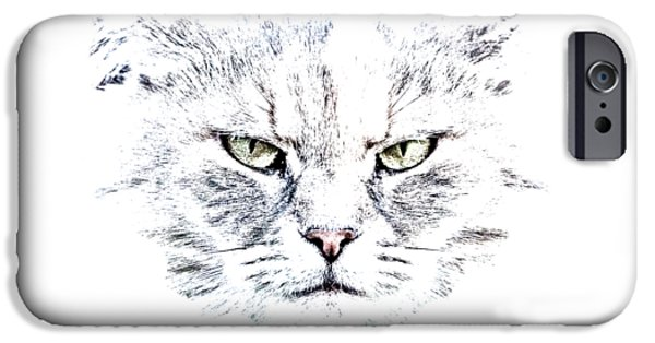 Disturbed Cat IPhone Case by Everet Regal