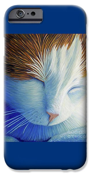 Dream Within A Dream IPhone 6s Case by Brian  Commerford