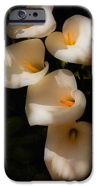 Dreamy Lilies IPhone 6s Case by Mick Burkey