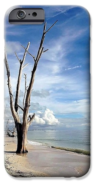 Driftwood At Lovers Key State Park IPhone Case by Janet King