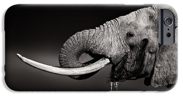 Elephant Bull Drinking Water - Duetone IPhone Case by Johan Swanepoel