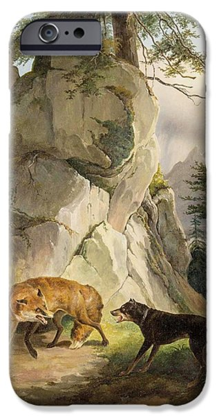 Encounter Of Fox And Dog In Rocky Landscape IPhone Case by MotionAge Designs