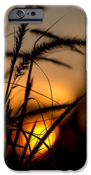 Evening Arrives IPhone Case by Andrea Kappler