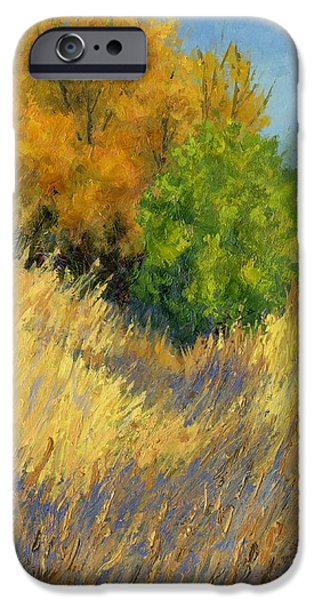 Fall Begins IPhone Case by David King