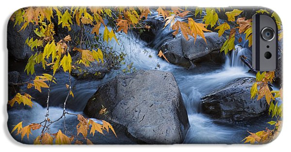 Fall Colors At Slide Rock Arizona IPhone Case by Dave Dilli