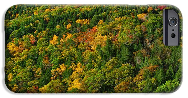 Fall Foliage Photography IPhone Case by Juergen Roth