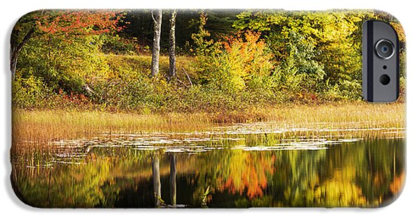 Fall Reflection IPhone Case by Chad Dutson